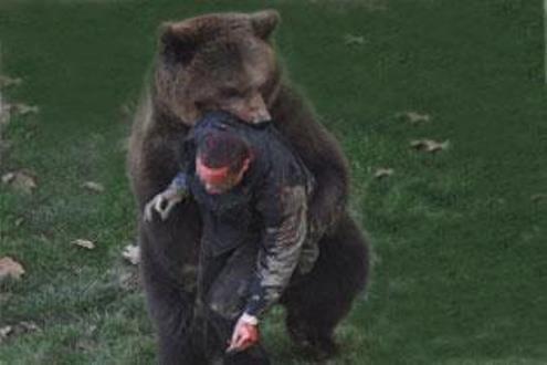 Как медведи убивают людей