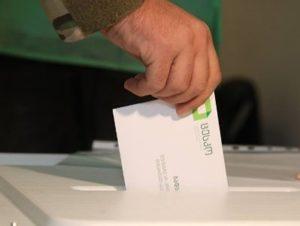 Выборы в Грузии: Явка за четыре часа составила 19,81%