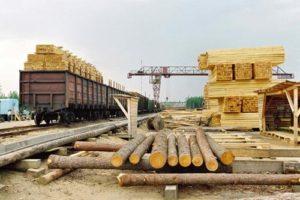 В России создают предприятие по лесопереработке с Арменией и Китаем