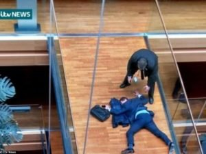 Британские парламентарии подрались в Европарламенте