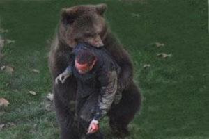 Медведь растерзал азербайджанца