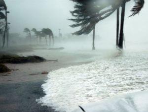 Число погибших в результате урагана «Мэтью» в Гаити превысило 100 человек