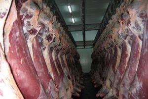 Экспорт мяса мелкого рогатого скота из Армении в Иран растет