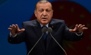 Турция ведет деструктивную региональную политику – посол