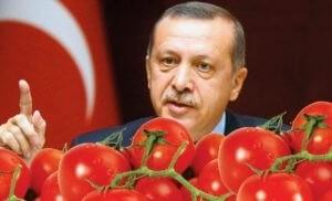 Путин: Россия не снимет запрет на импорт помидоров из Турции