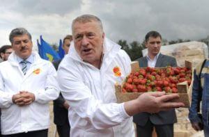 Единственного реального соперника Путина могут снять с выборов