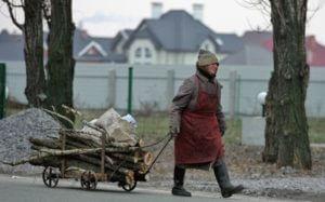 Россиянам разрешили бесплатно собирать валежник