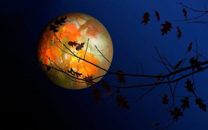 Растущая или убывающая луна, какая фаза сегодня 18 января 2019: Лунный календарь сегодня