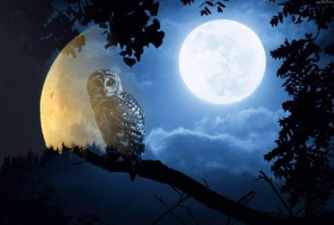 Лунный календарь сегодня. Луна 29 января 2019: растущая или убывающая луна, какая фаза сегодня, влияние луны