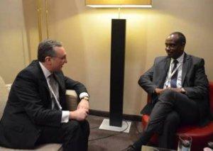 МИД: Армения обязуется развивать сотрудничество с африканскими странами