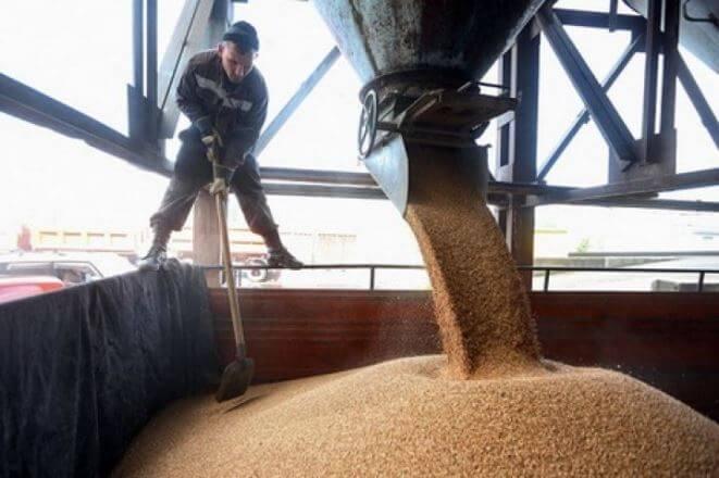 Снизились цены на пшеницу импортируемые в Армению из зернового терминала Поти