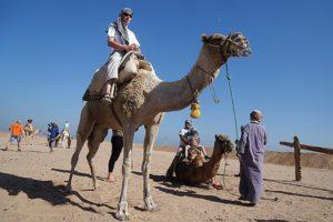 Чартеры из России в Египет: российские туристы в ожидании посещения Египта