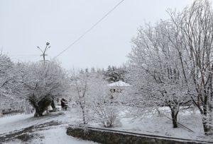 В Армении выпал первый снег: ожидается до пяти градусов мороза
