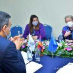 Омбудсмен Армении представил послу ЕС факты зверств ВС Азербайджана против народа Арцаха