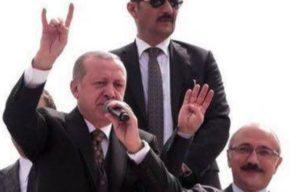 Немецкие парламентарии призывают наложить запрет на деятельность турецкой организации «Серые волки»