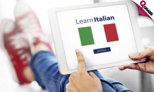 Изучение французского языка по скайпу: особенности